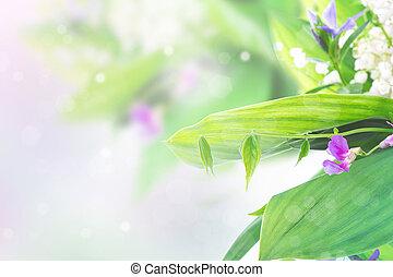 bello, confine floreale, lillies