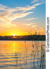 bello, dorato, sopra, cielo, lago, tramonto