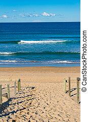 bello, entrata, vista, spiaggia, oceano