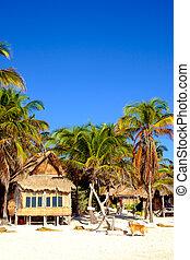 bello, estate, legno, cane, paesaggio, spiaggia, cabina