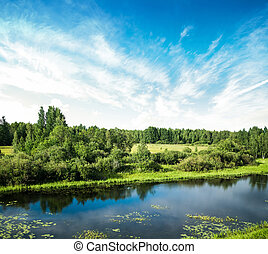 bello, estate, paesaggio