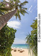 bello, estate, surin, spiaggia, koh