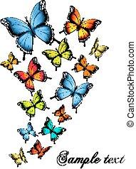 bello, farfalla, fondo., vector.