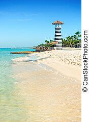 bello, faro, sabbia, albero, tropicale, riva, palma, sea., bianco, giorno, sabbioso