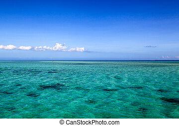 bello, figi, isola, spiaggia bianca, atollo