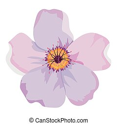 bello, fiore, disegno