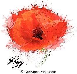 bello, fiore, drawing., acquarello, vector., papavero