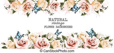 bello, fiore, vendemmia, acquarello, rose, vettore, fondo, butterflies?