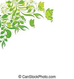 bello, fiori bianchi, verde