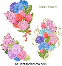 bello, fiori primaverili, collezione