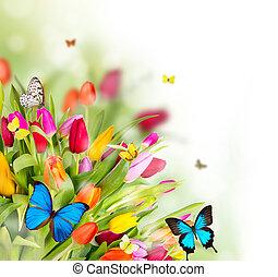 bello, fiori primaverili, con, farfalle