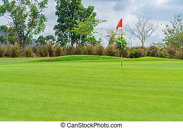 bello, golfcourse, corte, albero, verde, golf, erba, paesaggio