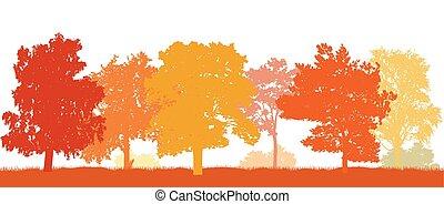 bello, illustration., alberi., parco, autunno, silhouette, vettore, autunno