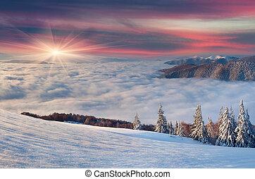 bello, inverno, alba, in, the;, montagne.
