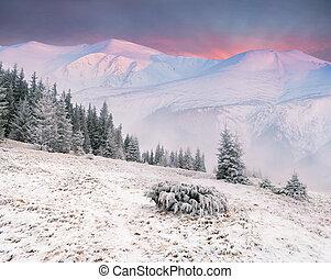 bello, inverno, alba, montagne