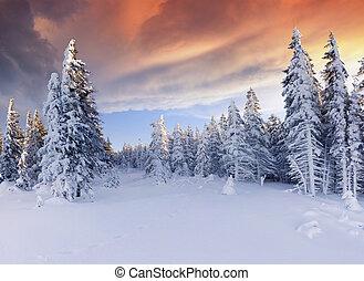 bello, inverno, cielo, drammatico, alba, montagne., rosso