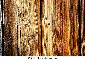 bello, legno, alterato