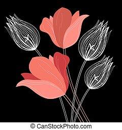 bello, mazzolino, tulips