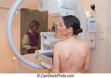 bello, mezzo, paziente, mammografia