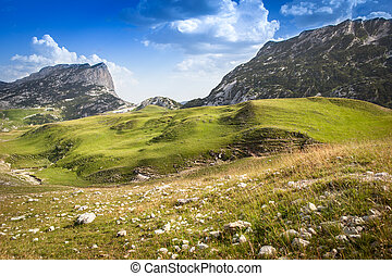 bello, montagna, colorito, paesaggio