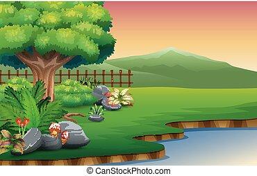 bello, montagna, fiume, parco, vista