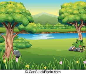 bello, montagna, parco, lanscape, natura