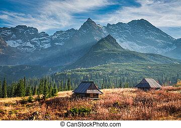 bello, montagna, tatras, polonia, tramonto, valle