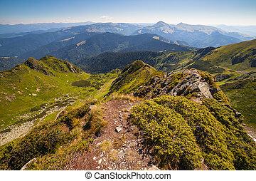 bello, montagne,  carpathian, paesaggio