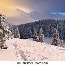 bello, montagne, inverno, alba