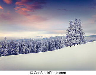 bello, montagne., inverno, alba