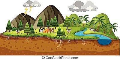 bello, mucche, scena, paesaggio
