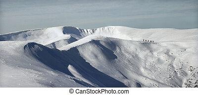 bello, natura, di, il, carpathian, montagne