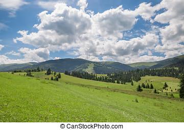 bello, natura, scenario, con, prato verde, e, catena montuosa