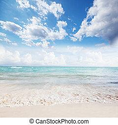 bello, oceano, e, sky.