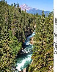 bello, paesaggio, con, montagne rocciose, in, jasper parco nazionale, alberta, canada
