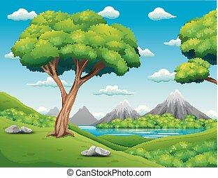 bello, paesaggio, foresta, fondo, natura