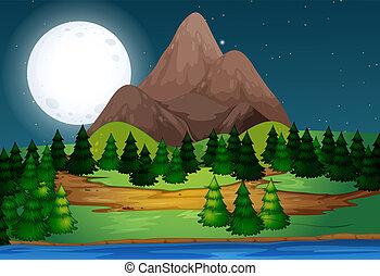 bello, paesaggio, notte