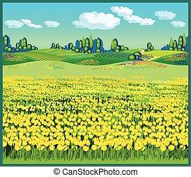 bello, paese, paesaggio, tulips