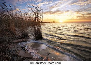 bello, potere, serbatoio, cielo, tramonto, pianta, paesaggio