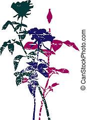 bello, rosa, fiori, silhouettes.