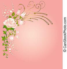 bello, rose, mazzolini