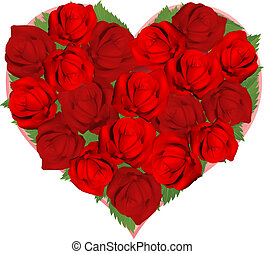 bello, rose rosse, in, forma cuore