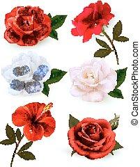 bello, set, isolato, fondo., vector., fiori bianchi