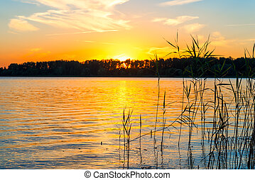 bello, sole, sopra, lago, serie, sunset.