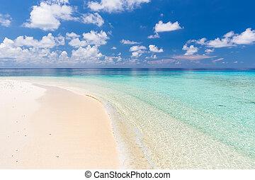 bello, spiaggia, oceano