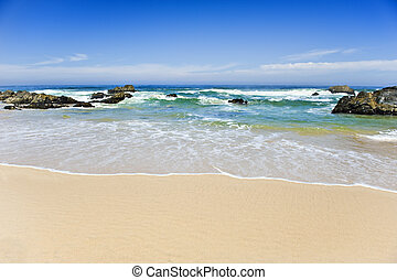 bello, spiaggia, su, uno, isola tropicale, -, poco profondo, profondità di campo