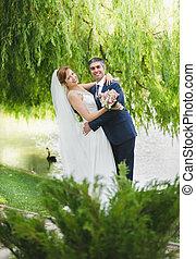 bello, sposo, albero abbraccia, sposa, sotto
