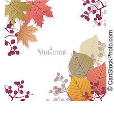 bello, stagionale, foglie, autunno, fondo, bacche