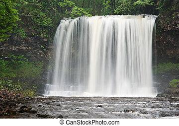bello, terreno boscoso, flusso, e, cascata, in, estate