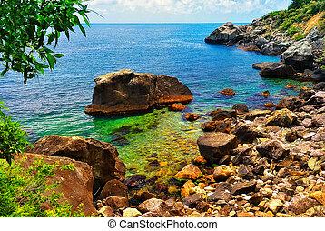 bello, tropicale, laguna